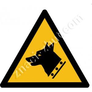 Внимание! Охранява се с кучета!