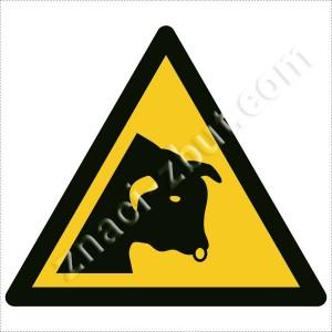 Внимание  ! Опасни селскостопански животни